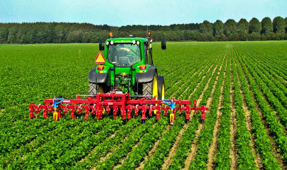 GHANA GETS 145 MILLION DOLLARS FOR COMMERCIAL AGRIC - Nigeria ...
