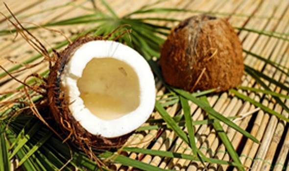 coconut value chain processing and export