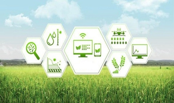importance of digital marketing to agriculture