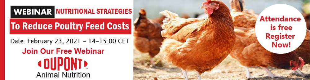 internation poultry webinar by dupont