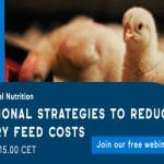 IFF Danisco Animal Nutrition Webinar