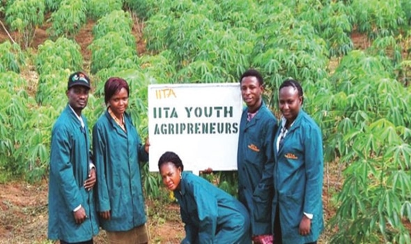 youths in agric business